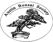 Austin Bonsai Society